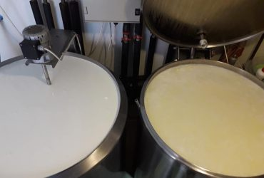 Túró és sajt gyártására alkalmas konténer, hűtőkamrával, csomagológéppel, teljes felszerelés